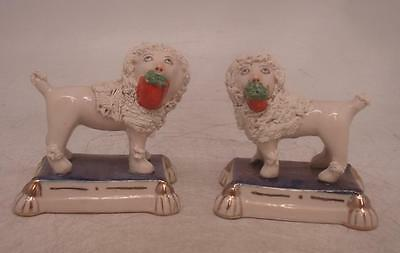 Staffordshire Pottery Figure - Pair of Poodle Dogs