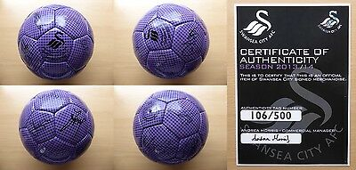 2013-14 Swansea City Football Signed by 1st Team Squad with official COA (8148)