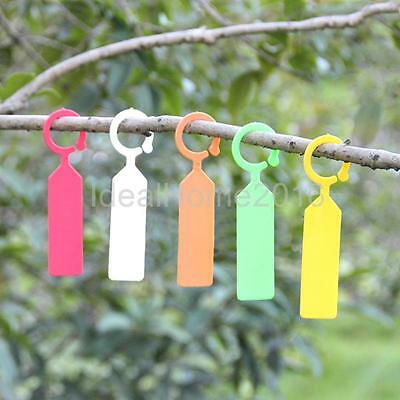 100x PP Clip on Tags Gardening Supply Plant Bonsai Ring Hanging Collar Label