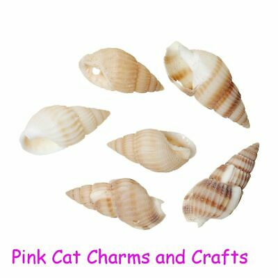 20 x NATURAL SEA SHELL BEADS SPIRAL MIXED SIZES 1MM DRILLED HOLE