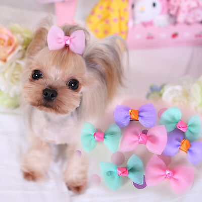 20PC Pet Dog Hair Bows Hairpin Puppy Cat Hair Clips Accessories Bowknot Grooming
