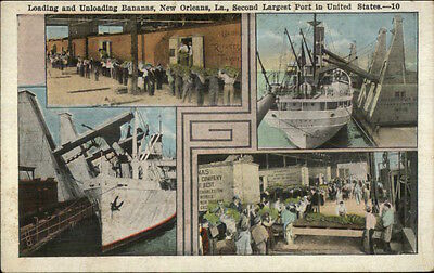 New Orleans LA Banana Shipping Industry Multi-View Scarce c1920 Postcard