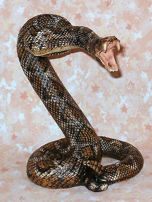 NEW~Realistic Diamondback Rattlesnake Coiled to Strike! Western Tribal Decor