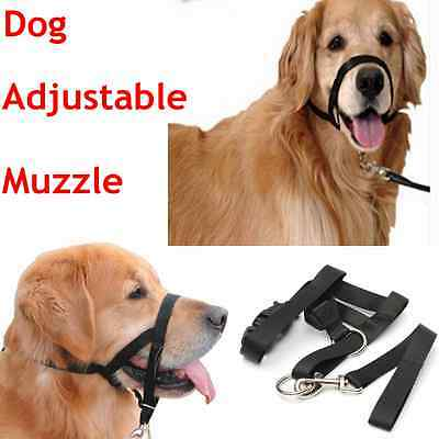Hot Halti Dogs Puppy Adjustable Buckle Muzzle Control Pulling Barking Link CCC