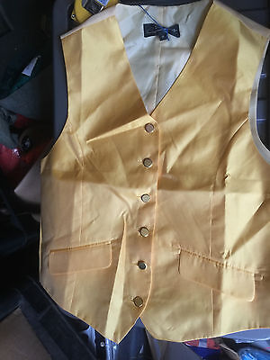 Equetech Gold Show Waistcoat Ex Large