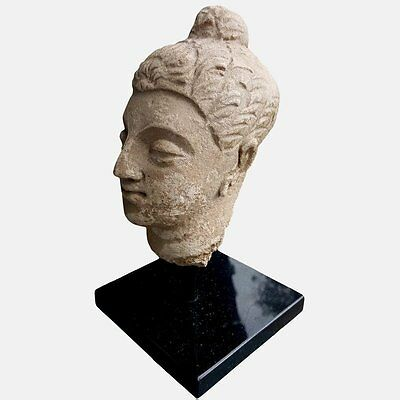 Minerva Gallery - Large Ancient Gandharan Buddha Head