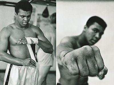 20 Muhammad Ali 4X6 Photo Prints Set Cassius Clay New Not Signed Unsigned