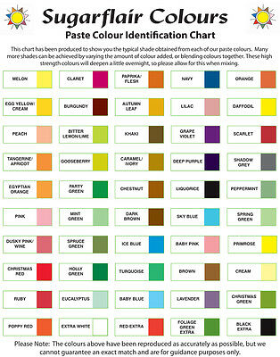 *Any 10* Sugarflair Paste Edible Gel Concentrated Icing Food Colouring Colour
