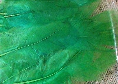 50 x GREEN FEATHERS - Great for all Crafts!  Colourful, brightly dyed.