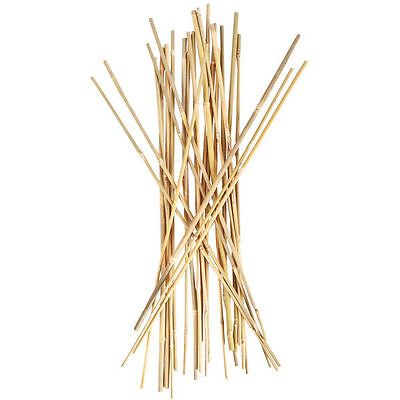 Sunleaves 3' Bamboo Stakes, 25 Pack - Plant Support Stakes