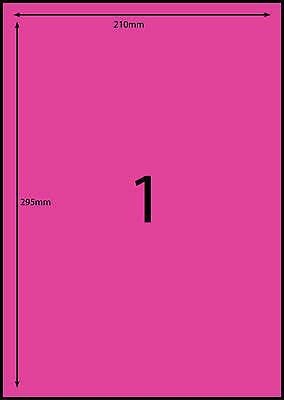 A4 Labels Avery Compatible100 sheets - 1 Fluoro PINK -1 labels page **DL RANGE