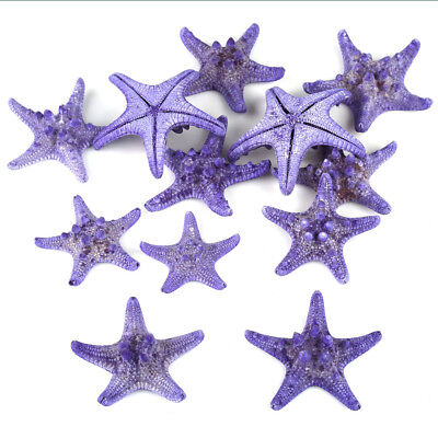 12pcs Colorful 6-9cm Starfish Sea Star Shell Beach Tank Decor Craft DIY Making