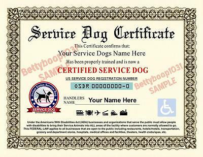 SERVICE DOG CERTIFICATE **Custom W/ Your Dogs Name & Handlers Name*** pet ADA ID