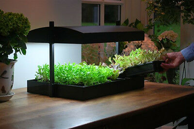 Garland Products Grow Light Garden Plant Propagation