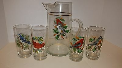 Vintage West Virginia American Birds Pitcher and Glass Set