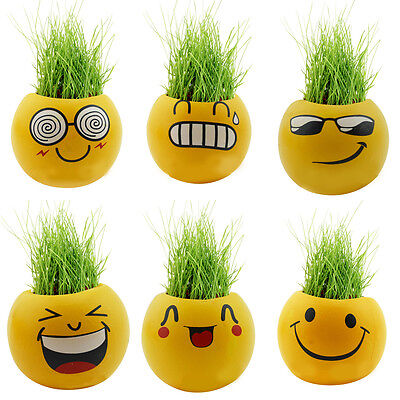 Funny Ceramic Planter Expression Hair Plant Green Grass Pot Seed Home DIY Craft