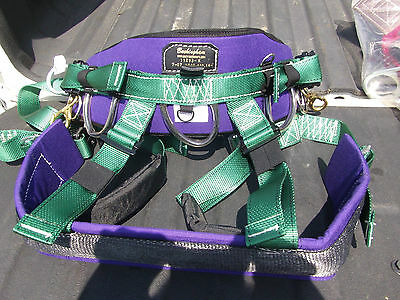 Buckingham Belt And Harness Combination 11293M