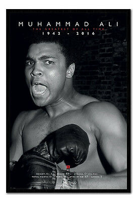 Framed Muhammad Ali The Greatest Commemorative Boxing Poster New