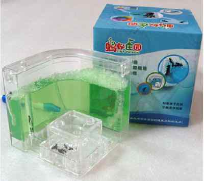 Pet toy Ant Nursery Farm Home Habitat Castle Maze with Feeding System Green