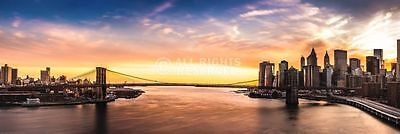 (LAMINATED) View From East River Nyc Door POSTER (158x53cm) New Wall Art