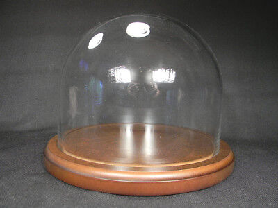 Top Quality GLASS DOME Display With a WOOD BASE Display X Large 743