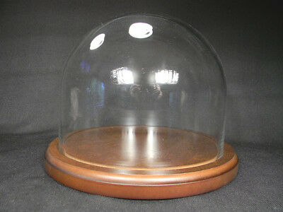 Top Quality GLASS DOME w/ WOOD BASE Display X Large 743