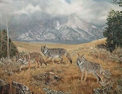 WAYFARERS, Charles Frace, Coyotes Print, Signed and Numbered