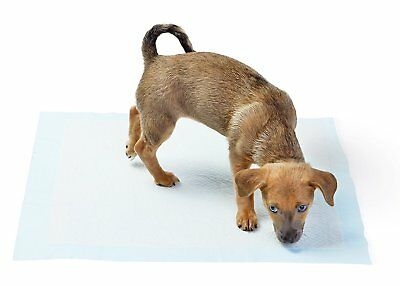 """400 Housebreaking 23"""" x  24"""" Dog PEE Pads Puppy Underpads House Training"""