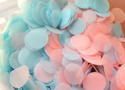 Gender Reveal Party Confetti - Pink & Blue Confetti Biodegradable Circles