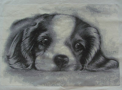 PUPPY  - Finished completed Cross Stitch