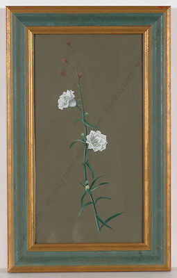 """Flower Study"", French gouache, early 19th century"