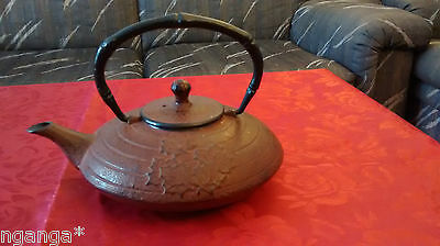 Cast iron traditional Japanese Asian tea kettle teapot with signature