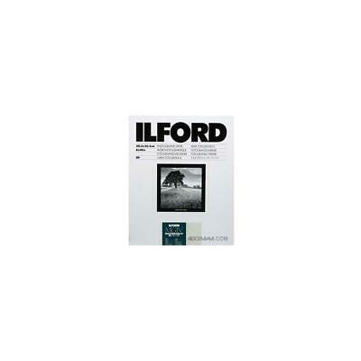 Ilford IV RC Deluxe Resin B/W Paper 8x10in, 50, Pearl #1799178