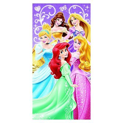 Large Wall ART Painting 24x12 DISNEY PRINCESS CANVAS Cinderella Picture Beauty