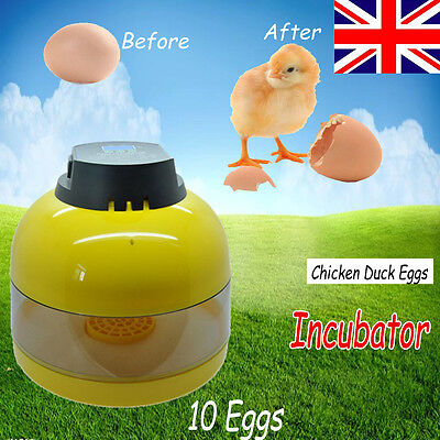 UK Plug Manul Digital Mini 10 Egg Incubator Poultry Hatcher Chicken Farm Duck