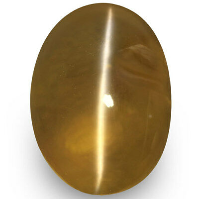 3.34-Carat Honey-Colored Chrysoberyl Cat's Eye with Strong Chatoyance (IGI)