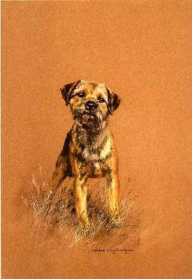 """BORDER TERRIER DOG FINE ART LIMITED EDITION PRINT - """"Attention!"""""""