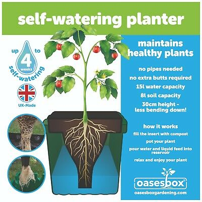 Self Watering Planter keeps your plants tomatoes watered Up to 4 weeks