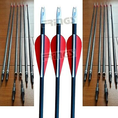 "10x 31"" Fiberglass Arrows 15-80lb Screw Tip Hunting Target Recurve Compound Bow"