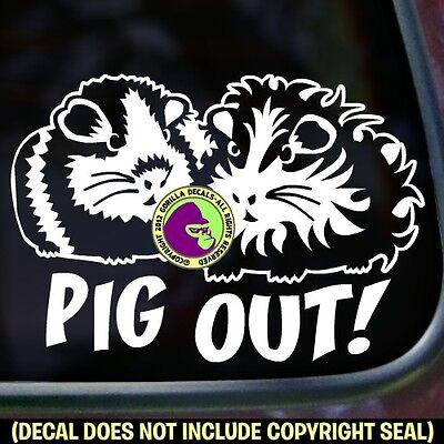 PIG OUT! Guinea Pigs Vinyl Decal Sticker Cavy Pig Pet Love Car Window Wall Sign