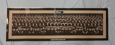 Long  Laminated Print Of New Zealand  Rugby Union Players