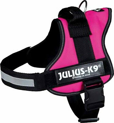 Julius K9 French Bulldog or Bulldog Power House Harness Dog Pink Fuchsia L, XL