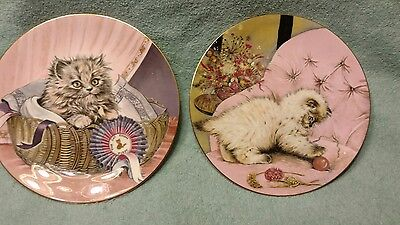 2 Royal Worcester Cat Plates Little Rascal First Prize Hamilton collection 1985
