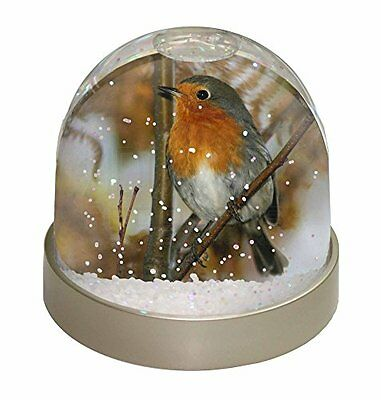Autumn Robin Red Breast Snow Dome Globe Waterball Gift