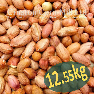 10kg *Premium Grade* Peanuts for Wild Birds -  Groundnut Kernels Bird Food Nuts