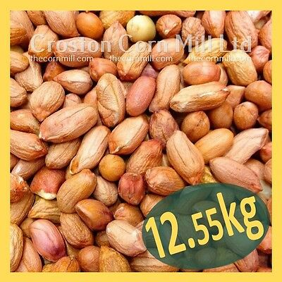 12.55kg *Premium Grade* Peanuts for Wild Birds  Groundnut Kernels Bird Food Nuts