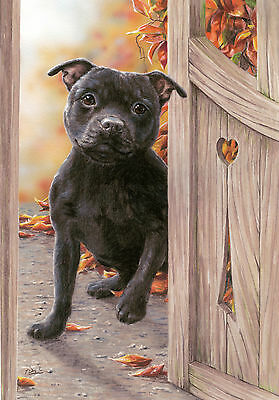 STAFFORDSHIRE BULL TERRIER DOG LIMITED EDITION PRINT  Home is Where the Heart Is