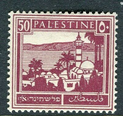 PALESTINE;  1927-45 early definitive issue fine Mint hinged 50m. value