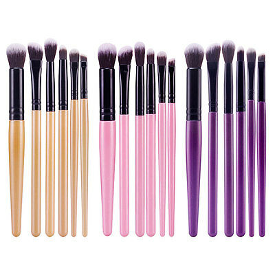 6PCS Professional Eyeshadow Eyebrow Blending Brush Set Eye Makeup Brushes