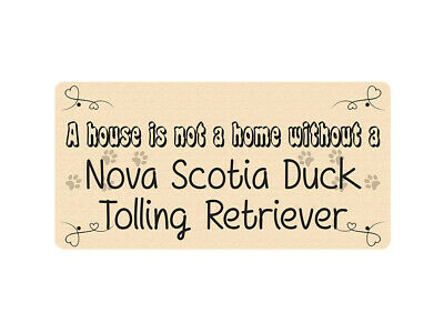 WP_PET_127 A house is not a home without a Nova Scotia Duck Tolling Retriever -